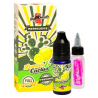 LEMON & CACTUS - BIG MOUTH - CONCENTRÉ 30ML